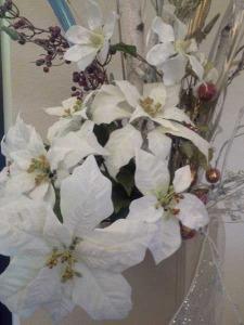 Epiphany white flowers